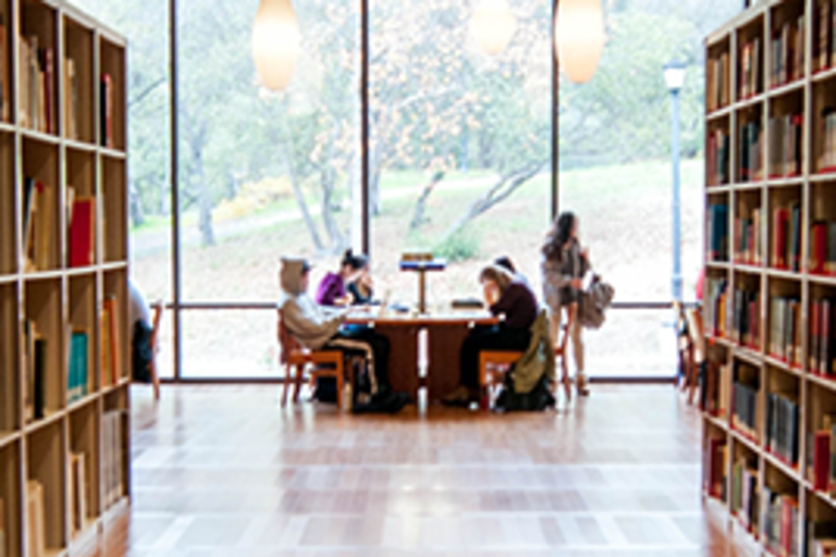Students studying at table in library in front of big windows